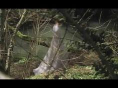 Santa Rita de Cascia La pelicula 10 - YouTube