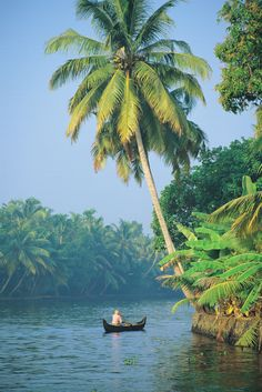 Travel With Kat - discovering new countries, cultures, and cuisines (image: Kerala Backwaters, India) Kerala Travel, India Travel, Kerala Tourism, Places Around The World, Around The Worlds, Places To Travel, Places To Visit, Tourist Places, Kerala Backwaters