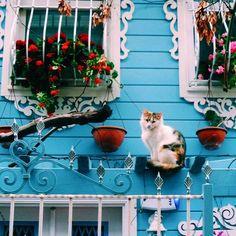 Kuzguncuk...İstanbul...