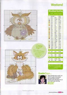 Cross Stitch Crazy 174