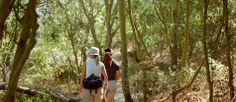 Spa Retreats In California | Golden Door Spa & Resort | Escondido