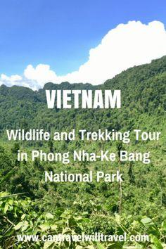 Wildlife and jungle trekking tour in Phong Nha-Ke Bang Nationa Park, Vietnam