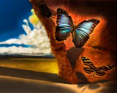 Dali Paintings | salvador dali painting butterfly image search results