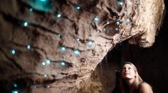 At the Glow Worm cave in New Zealand, loud noises will make the critters light up, which makes for awesome fun.