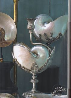 A set of nautilus shells on silver stands.