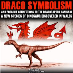 Stillness in the Storm : Draco Symbolism and Possible Connections to the Dracoraptor hanigani a New Species of Dinosaur Discovered in Wales - 1/22/2016 - #DRACORAPTOR #SCIENCE #SYMBOLISM #DRACO #RAPTOR #ET #DISCLOSURE #SITS #STILLNESSINTHESTORM  Long Link: http://sitsshow.blogspot.com/2016/01/draco-symbolism-and-possible.html