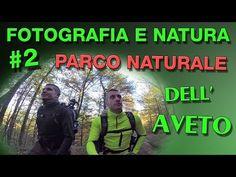 Fotografia e Natura #2: Foresta delle Lame - Parco Naturale dell'Aveto - YouTube