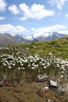 beautiful mountain landscape: Austria,Solden.