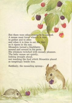 """""""Mousekin's Family"""" - story and pictures by Edna Miller, Prentice Hall, 1969  (https://www.etsy.com/listing/115672298/mousekins-family?ref=v1_other_2)"""