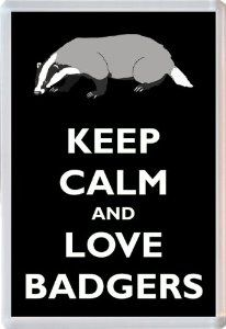 Keep Calm and Love Badgers - Jumbo Fridge Magnet Gift/Souvenir/Present: Amazon.co.uk: Kitchen & Home