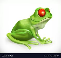 Red Eyed Tree Frog, 3d Icons, Frog Art, Frog And Toad, Tree Frogs, App Icon, Adobe Illustrator, Funny Animals, Pdf