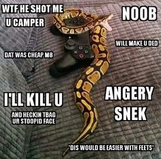 Angry gamer snek