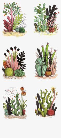Illustrations Cacti -- Magic Cactus Garden - Geffen Refaeli freelance illustrator from Tel Aviv. Cactus Drawing, Plant Drawing, Cactus Art, Cactus Flower, Garden Drawing, Cactus Painting, Cactus Doodle, Plant Painting, Flower Plants