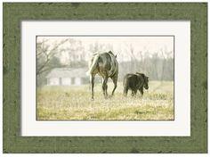 Off To The Barn by Brian Mollenkopf Art Prints For Sale, Fine Art Prints, Moose Art, Barn, Horses, Wall Art, Delaware, Art Work, Ohio