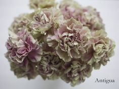 Antigua Carnation, part of the Antique Collection available from Florabundance Wholesale.