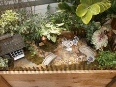 Fairy Gardening | Sargent's Nursery