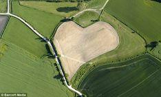 Heart-shaped garden in Waltrop, Germany stranezze della natura - Cerca con Google