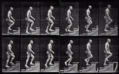 Eadweard Muybridge/man walking up stairs Motion Photography, History Of Photography, Animation Reference, Anatomy Reference, How To Draw Stairs, Walking Up Stairs, Eadweard Muybridge, Blog Art, Stair Art
