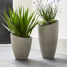 Shop Slant Planters.  A slight slant to the rim trends these planters from the expected to the delightfully different.