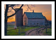 Birch Barn Framed Print By Bonfire #Photography