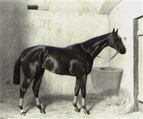 ARULO A CHESTNUT RACEHORSE IN A STALL by Emil Adam