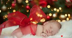 Baby Pictures Newborn Christmas Photo Shoot 18 Ideas For 2019 Newborn Christmas Pictures, Newborn Pictures, Baby Pictures, Baby Christmas Photoshoot, Newborn Pics, Baby Newborn, Foto Newborn, Newborn Shoot, Foto Baby
