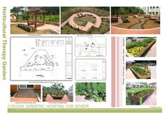 I'm going to made horticultural therapy garden for people with physical disabilities. Garden