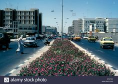 Entrance to Sharjah with main street and flower bed in 1974 Stock Photo Sharjah, Palestine, Flower Beds, Main Street, Entrance, Maine, Stock Photos, Illustration, Flowers