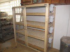 Guinea Pig racks
