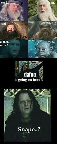 Verum De Mea Familiam Herr der Ringe, Harry Potter Related posts:Collection of Harry Potter memesTop 26 Animals Humor memes - Cobra Kai Quotes - Potter Wortspiele und Meme So. Harry Potter Humor, Images Harry Potter, Fans D'harry Potter, Lily Potter, Potter Facts, Harry Potter Comics, Memes Humor, Funny Memes, Hilarious