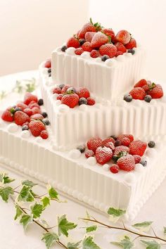 This would make an excellent Christmas cake! Cute Cakes, Pretty Cakes, Beautiful Cakes, Amazing Cakes, Fruit Wedding Cake, Wedding Cakes, Decoration Patisserie, Japanese Cake, Gateaux Cake