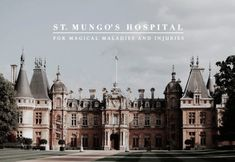 St Mungo's Hospital for Magical Maladies and Injuries is a wizarding hospital located in London, England. It was founded by famous Healer Mungo Bonham in the Harry Potter Shop, Harry James Potter, Hogwarts, Slytherin, Celine, Neville Longbottom, Harry Potter Aesthetic, Drarry, Mischief Managed