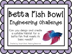 Betta Fish Bowl: Engineering Challenge Project ~ Great STEM Activity! $
