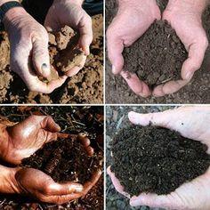 Jacinta Lalali: Clases de suelos que podemos encontrar en nuestro ...