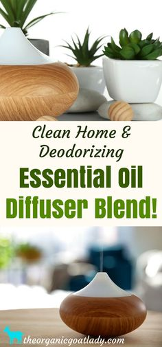 Clean Home & Deodorizing Essential Oil Diffuser Blend, Aromatherapy Recipes, Essential Oil Recipes, Cleaning Naturally, Top Essential Oils, Homemade Essential Oils, Essential Oils Cleaning, Geranium Essential Oil, Essential Oil Diffuser Blends, Aromatherapy Recipes, Aromatherapy Oils, Natural Cleaning Products, Deodorant