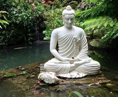 Self – control Self – control is perfect control over senses. First of all, we all have a lot of flaws; none is perfe. Buddha Garden, Buddha Zen, Gautama Buddha, Buddha Drawing, Buddha Painting, Buddha Background, Buddhism Wallpaper, Buddha Thoughts, Buddha Decor