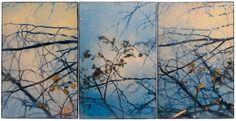Guemes Island Series by Fine Art Photo, Photo Art, Wax Art, Tree Paintings, Aspen Trees, Encaustic Painting, Artist Profile, Tree Art, Unique Art