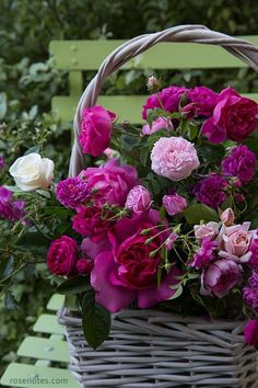 Basket of Fresh Cut Purple Flowers pink red flowers roses purple basket bouquet vase arrangement fresh cut Love Rose, My Flower, Fresh Flowers, Pretty Flowers, Pink Flowers, Colorful Roses, Deco Floral, Arte Floral, Beautiful Roses