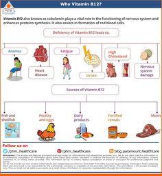 Why vitamin B12- Wellness Wednesdays #vitamins #proteins #diet #health #heealthylifestyle