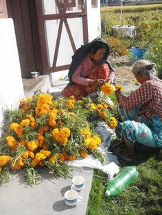 Marigold for Tihar. This photo was taken while mother and daughter were preparing to sell the marigold flower grown in there small land. They sell the marigold flower in the city area where there is the high demand of this flower during festive season of Tihar .Bisnumaya tamang (daughter) hopes to get a profit from selling flowers and hopes to fulfill her expenses for Tihar with it. Photographer : garima thapa