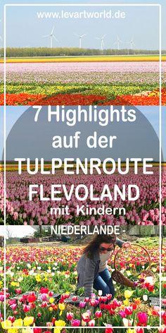 7 Highlights auf der Tulpenroute Flevoland in den Niederlanden mit Kindern. Tulpen, soweit das Auge reicht, in allen Formen und Farben, schmücken jedes Jahr von April bis Mai die Landschaft von Flevoland. Die Tulpenroute Flevoland ist mit 3500 Hektar an Blumenfeldern die längste und farbenprächtigste Tulpenroute derNiederlande.Ein unglaubliches Naturschauspiel!