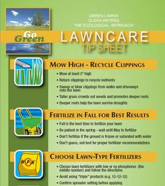Lawn Care Tips infographic:  Mowing and Fertilization