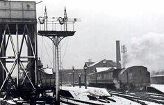 Steam Railway, Roots, History, Historia