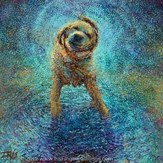Yağmur ve köpek