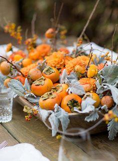 Autumn's Glory into Winter's Wonders