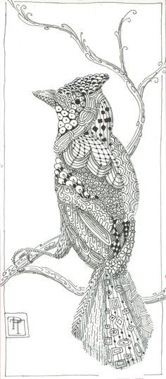 Zentangle beauty
