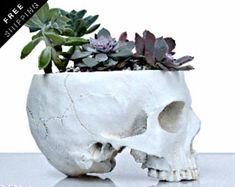 Human Skull Replica, Tabletop planter, Human Skull Decor, Cactus Planter Gift, Skull Replica, Happy Planters, Human skull vase, Human Skull
