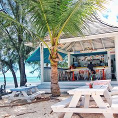 Da Conch Shack on Providenciales in the Turks & Caicos is one of the best beach bars out there.  Find more cool places via our beautiful app, which was chosen as an App Store Best New App: Spot.com.