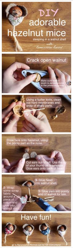 How to make adorable hazelnut mice! So cute! Great craft to get the kids involved with! www.renaissance-revival.com