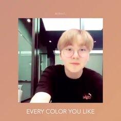 Woozi, Wonwoo, Jeonghan, Seventeen Album, Seventeen The8, Seventeen Memes, Vernon, Diecisiete Memes, Handsome Asian Men